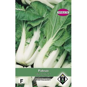 Paksoi, Brassica chinensis Win Choi F1