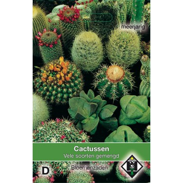 Cactusmengsel