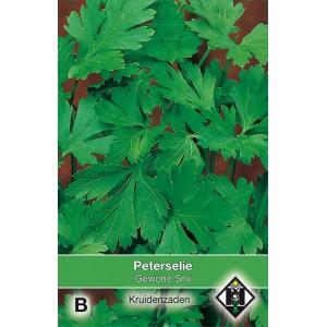 Peterselie Gewone Snij / Petroselinum crispum 'Gewone Snij'