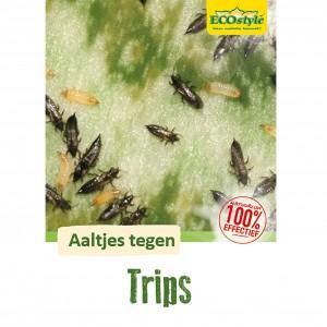 Aaltjes tegen larven trips F 15 mln/30 m²