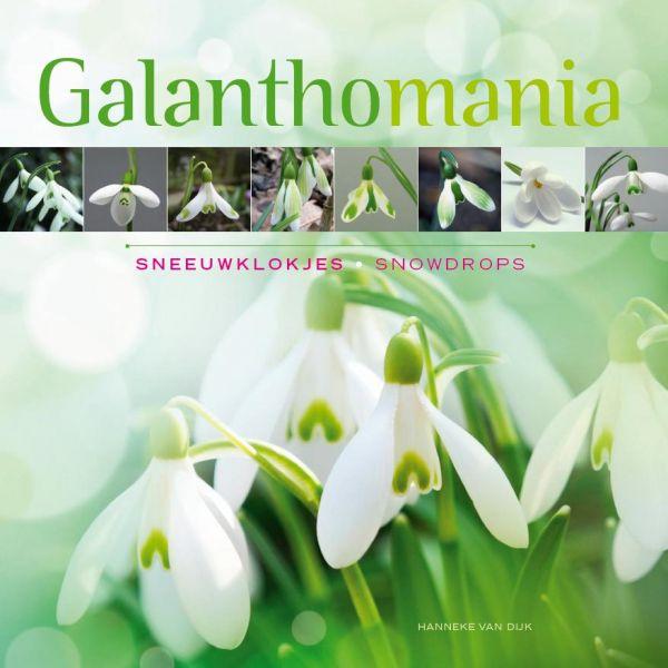 GALANTHOMANIA