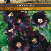 Catalogus 1991