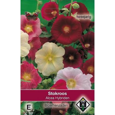 Alcea ficifolia 'Hybriden'