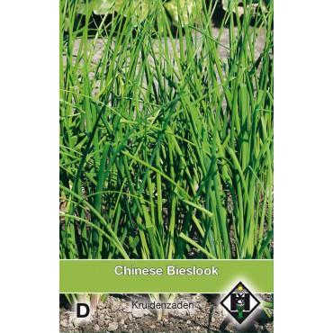 Chinese Bieslook / Allium tuberosum