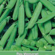Vleeserwt, Pisum sativum 'Delikett', 50 gr.
