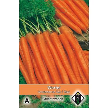 Wortel Amsterdamse Bak 2 Maxi