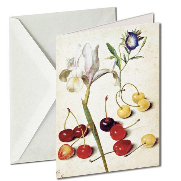 Museumkaart 'Cherries, iris, bindweed'