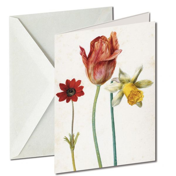 Museumkaart 'Anemone, tulip and narcissus'