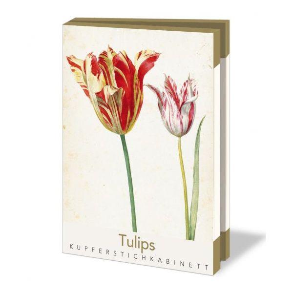 Kaartenmapje Tulips