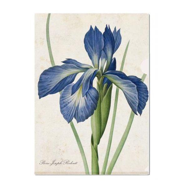 L-mapje Redouté Iris