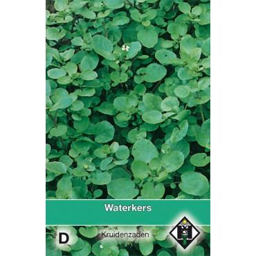 Waterkers / Nasturtium