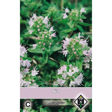 Tijm / Thymus