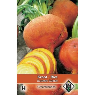 Biet - Kroot, Beta vulgaris 'Burpees Golden'