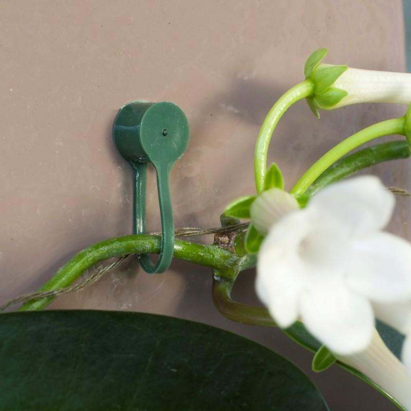 Plantenklemmen, klikverbinding