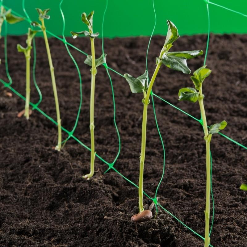 Tuinnet, Klim-groei- en geleidenet