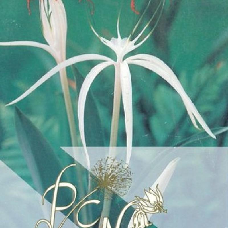Catalogus 1993, voorjaar
