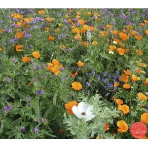 Bloemenmengsel Middelhoog