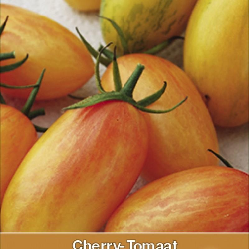Cherry-Tomaat, Lycopersicon esculentum 'Blush Tiger'