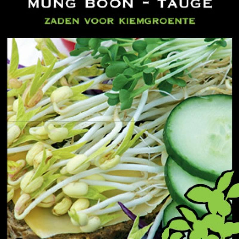 Mung boon - Tauge