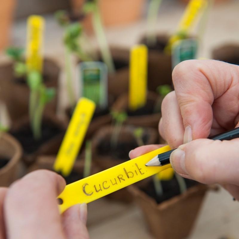 Plantenetiket, kunststof met tuinpotlood