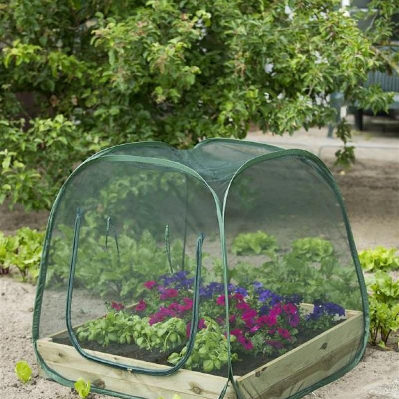 Pop-up kas voor een vierkante-meter-tuin -insectengaas-